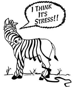 Losing-it-Stress